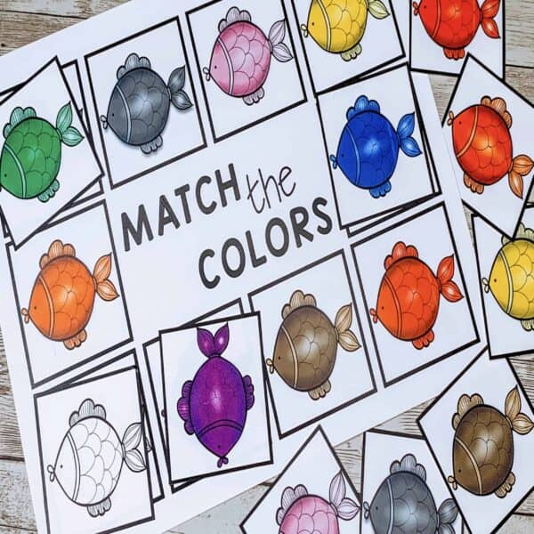 color-matching-activity