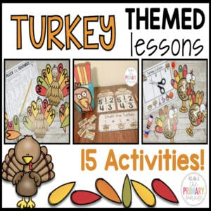 turkey-activities