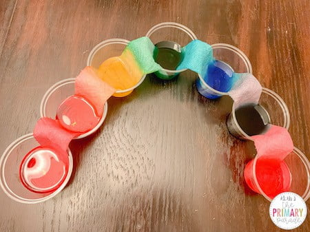 Walking colors science experiment for St Patricks Day