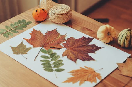 fall arts and crafts for kids